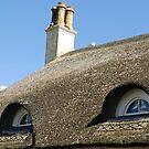 Eyes in the roof ........ Sidmouth, Devon UK by lynn carter