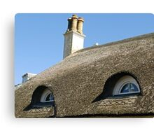 Blue Eyes in the roof ........ Sidmouth, Devon UK Canvas Print