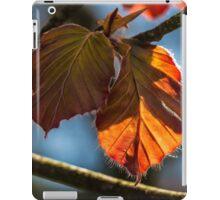 Macro Leaves Square Photo iPad Case/Skin