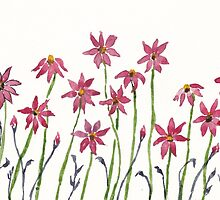 Dancing daisies by Maree  Clarkson