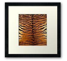 Tiger Strips Fur Framed Print