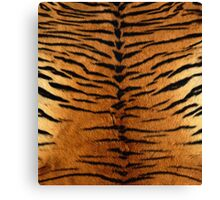 Tiger Strips Fur Canvas Print