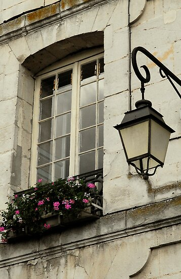French window by triciamary