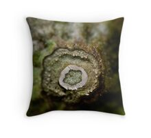 Eggplant Throw Pillow