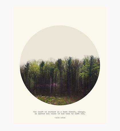 Dark Forest - Circle Print Series Photographic Print