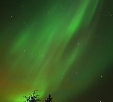 Oh aurora borealis... by dreidimensional