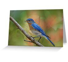 Bluebird Symphony Greeting Card