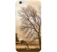 Trees In Sepia......................................Most Products iPhone Case/Skin