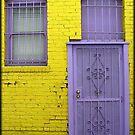 Back Door by Chet  King