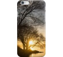 Early Gold Through the Willow Branches - A Sunrise on the Shore of Lake Ontario iPhone Case/Skin