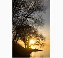 Early Gold Through the Willow Branches - A Sunrise on the Shore of Lake Ontario T-Shirt