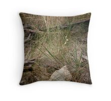 Native Grass Throw Pillow