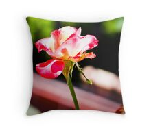 Beauty in the Sun Throw Pillow