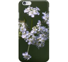 White spring blossom. iPhone Case/Skin