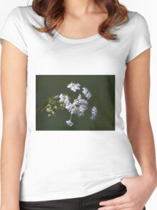 White spring blossom. Women's Fitted Scoop T-Shirt