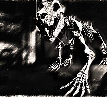 Locked Up Old Dinosaur in Black and White  by Hany  Kamel