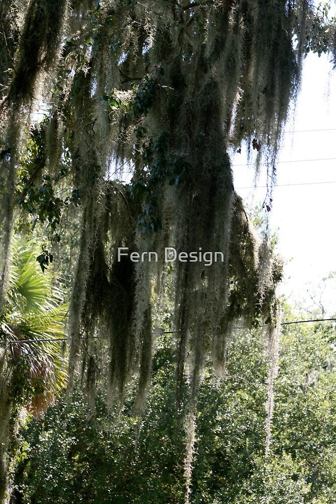 Spanish Moss by Fern Design