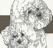 Bichon Frise Father & Son by BarbBarcikKeith