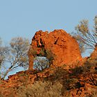 Elephant Rock... by A1000WORDS