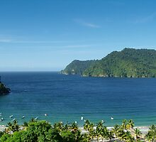 Looking out to Maracas Bay by cbarran