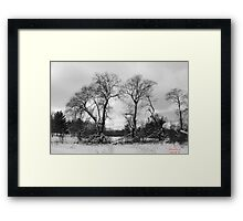 The Stand Framed Print