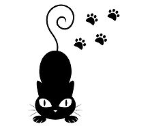 Black Cat by Vitalia