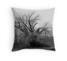 030609-37   WINDSWEPT Throw Pillow