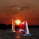 Sailing by Gail Bridger