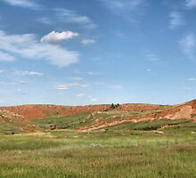 Painted Hills by WILDBRIMOWILDMAN