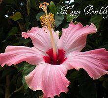 Happy Birthday by Tammy Houston