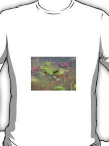 Frog in pond T-Shirt