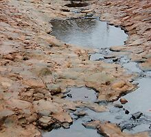 Rock Pool by Nathan Pearce