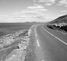 Burren county road by John Quinn