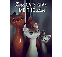 Twee cats give me the shits Photographic Print