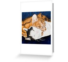 Peaceful sleep?-Jake and Jonah-Pet portrait Greeting Card