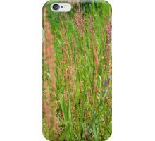Along The Creek iPhone Case/Skin