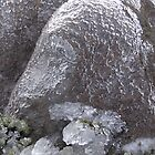 Alien Ice Form - Mt Wellington by largo