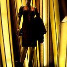 Louis Vuitton @ Ion by richardseah