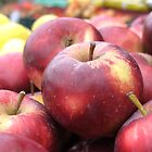 Tassie Apples by largo