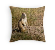 P.D. Sodhouse Throw Pillow