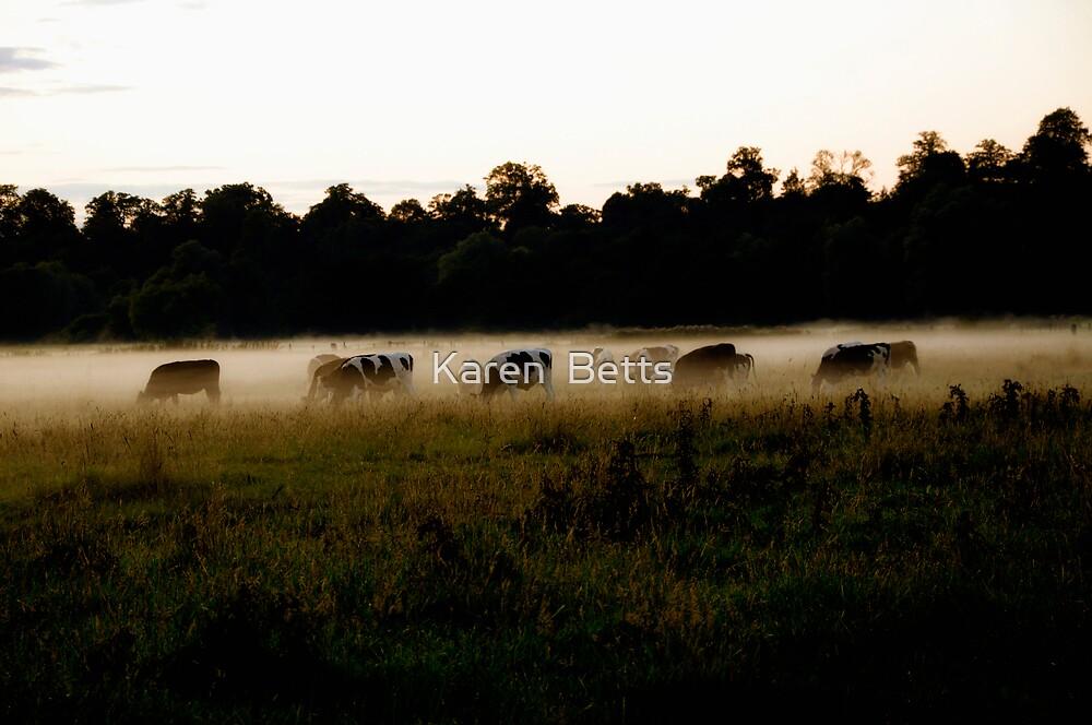 Lost in the Mist by Karen  Betts