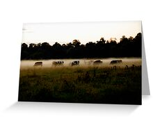 Lost in the Mist Greeting Card