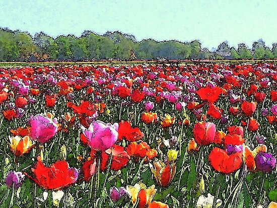 Tulipfield in Aquarel by ienemien