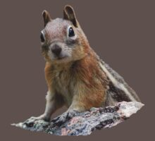 Ground Squirrel on Stage T-Shirt