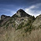 Grandfather Mountain by Harry H Hicklin