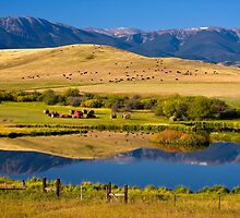 Montana Ranchland. USA. by photosecosse /barbara jones