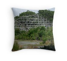 Lincoln Park Coaster, Sorry, Ride Closed! Throw Pillow