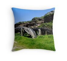 A derelict Currach in Co. Kerry, Ireland Throw Pillow
