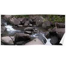 Stream at Iao Valley State Park Poster
