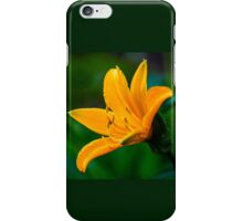 Yellow Wild Large Flower iPhone Case/Skin